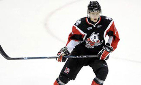 Dougie Hamilton, a Boston Bruins prospect and a Niagara Ice Dogs defender stands to lose a year of NHL hockey to the potential lockout
