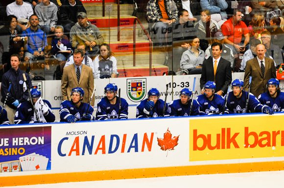 There will be familiar faces and some new life in this year's edition of the Toronto Marlies.
