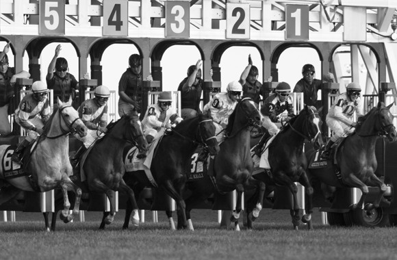 Horses leave the starting gate on a busy day at Woodbine