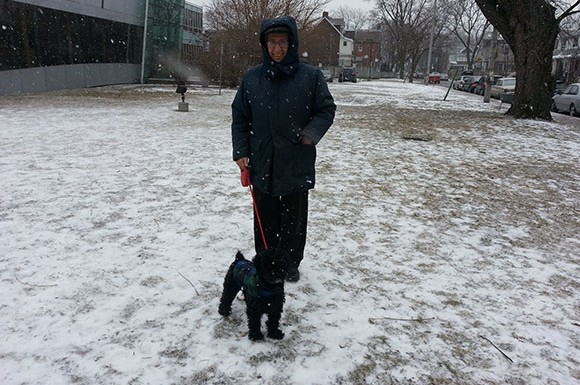 Dominic Gagliese walks his daughter's dog on Carlaw Avenue on Thursday as the snow began to fall (Bernard Toney/ Toronto Observer)