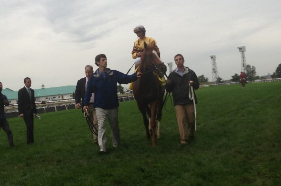 Wise Dan walks past the crowd at Woodbine Racetrack Sunday after setting a new course record and winning his second Ricoh Woodbine Mile (Katie Lamb/ Toronto Observer)