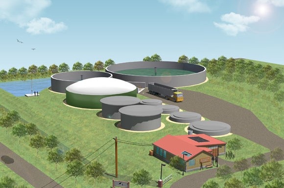 The first-ever North American zoo biogas plant is set to cover one and a half acres of the Toronto zoo's land and will be located at the current compose facility on the east side of Meadowvale Road where the zoo composts all of its animal manure.