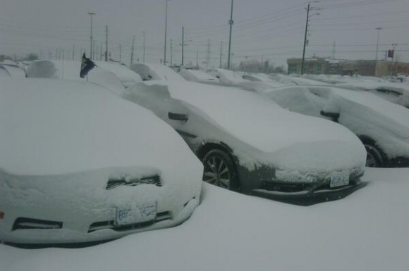 Up to 25 centimetres of snow have fallen in parts of the GTA, leading to a slew of shutdowns and traffic problems.