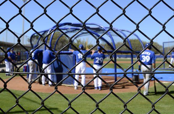 Blue Jays prospects take to batting practice at the Bobby Mattick Training Centre in Dunedin, Fla., on Monday.