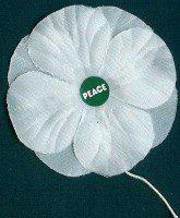 www.members.shaw.ca/peacepoppies
