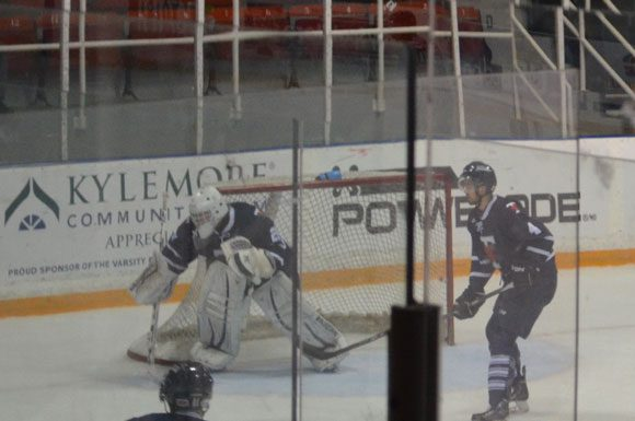 U. of T. goalie Brett Willows made 31 saves in a 4-2 loss to the York Lions on Saturday. This photo is from his previous start at home against Laurier.