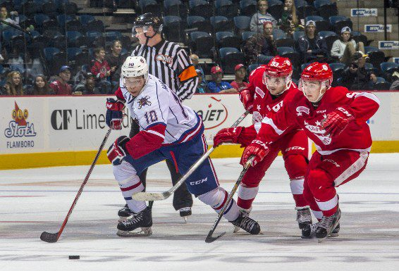 Hamilton Bulldogs forward Stephen Harper (left) has been a bright light for the team.