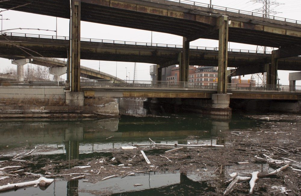 Driftwood and garbage gathers at the sharp turn where the Don River turns west into the Keating Channel