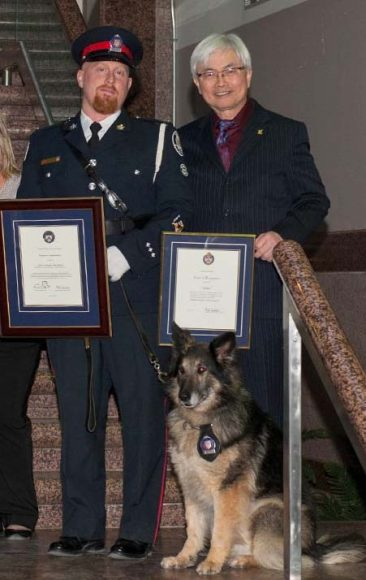Const. John Massey and General Purpose dog Jetta receive recognition at Toronto Police Awards.